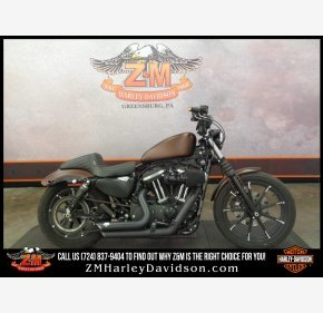 2019 Harley-Davidson Sportster Iron 883 for sale 200924562