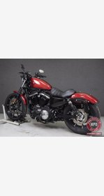 2019 Harley-Davidson Sportster Iron 883 for sale 200927536