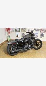 2019 Harley-Davidson Sportster Iron 883 for sale 200929639
