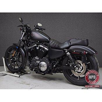 2019 Harley-Davidson Sportster Iron 883 for sale 200930632