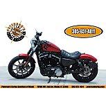 2019 Harley-Davidson Sportster Iron 883 for sale 200940741
