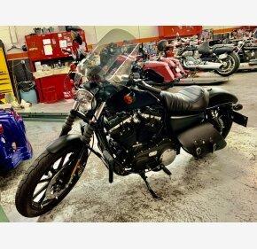 2019 Harley-Davidson Sportster Iron 883 for sale 200940890