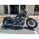 2019 Harley-Davidson Sportster for sale 200943894