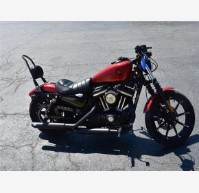 2019 Harley-Davidson Sportster for sale 200944377