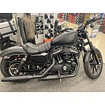 2019 Harley-Davidson Sportster Iron 883 for sale 200944510