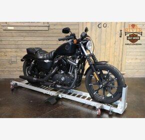 2019 Harley-Davidson Sportster Iron 883 for sale 200945117