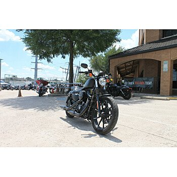 2019 Harley-Davidson Sportster Iron 883 for sale 200945979