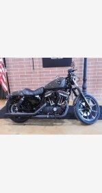 2019 Harley-Davidson Sportster Iron 883 for sale 200946681