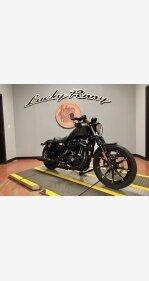 2019 Harley-Davidson Sportster for sale 200949457