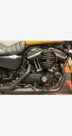 2019 Harley-Davidson Sportster Iron 883 for sale 200967324