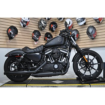 2019 Harley-Davidson Sportster Iron 883 for sale 200980394