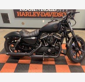 2019 Harley-Davidson Sportster Iron 883 for sale 200993518