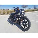 2019 Harley-Davidson Sportster Iron 883 for sale 200998159