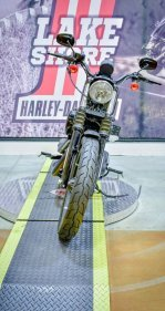2019 Harley-Davidson Sportster Iron 883 for sale 201005656