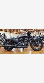2019 Harley-Davidson Sportster Iron 883 for sale 201005720