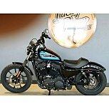 2019 Harley-Davidson Sportster for sale 201026384