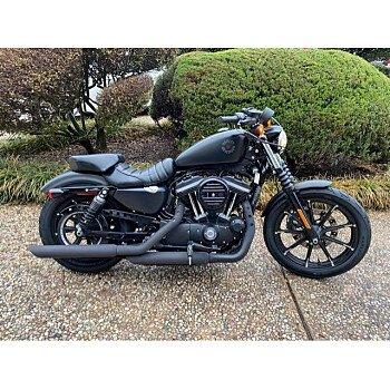 2019 Harley-Davidson Sportster for sale 201044859