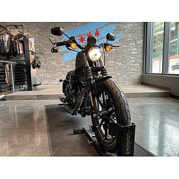 2019 Harley-Davidson Sportster Iron 883 for sale 201048008