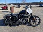 2019 Harley-Davidson Sportster Iron 883 for sale 201048058