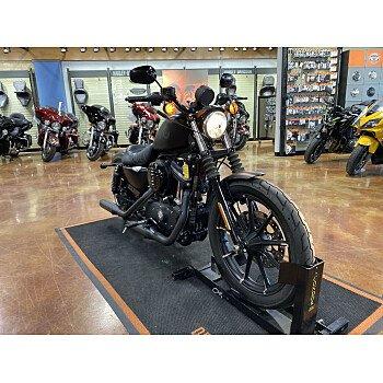 2019 Harley-Davidson Sportster Iron 883 for sale 201048074