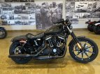 2019 Harley-Davidson Sportster Iron 883 for sale 201048861