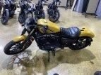 2019 Harley-Davidson Sportster Iron 883 for sale 201048907