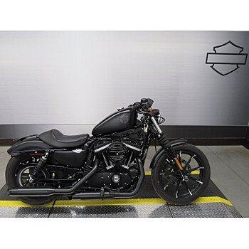 2019 Harley-Davidson Sportster Iron 883 for sale 201051698