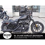 2019 Harley-Davidson Sportster Iron 883 for sale 201054649