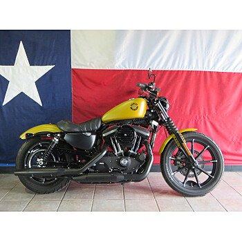 2019 Harley-Davidson Sportster Iron 883 for sale 201055868