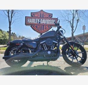 2019 Harley-Davidson Sportster Iron 883 for sale 201060474