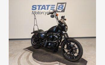 2019 Harley-Davidson Sportster Iron 883 for sale 201062801