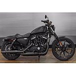2019 Harley-Davidson Sportster Iron 883 for sale 201064312