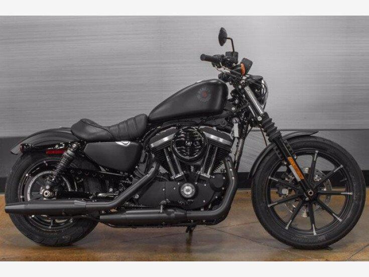 2019 Harley-Davidson Sportster Iron 883 for sale 201064522