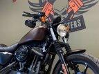 2019 Harley-Davidson Sportster Iron 883 for sale 201067924