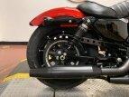 2019 Harley-Davidson Sportster for sale 201069830