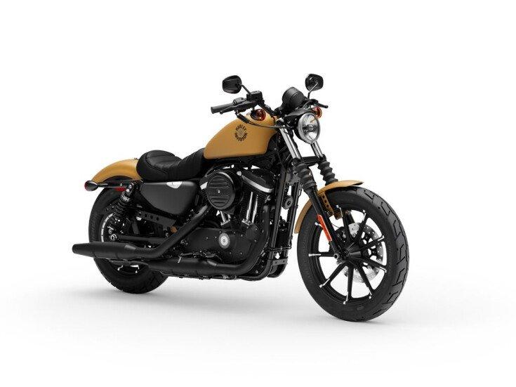 2019 Harley-Davidson Sportster Iron 883 for sale 201070600