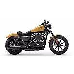2019 Harley-Davidson Sportster Iron 883 for sale 201072652