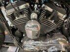 2019 Harley-Davidson Sportster 1200 Custom for sale 201073426