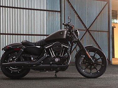 2019 Harley-Davidson Sportster Iron 883 for sale 201074065