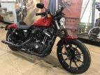 2019 Harley-Davidson Sportster Iron 883 for sale 201077772