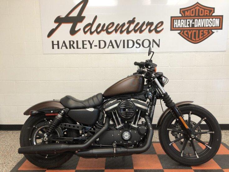 2019 Harley-Davidson Sportster Iron 883 for sale 201077821
