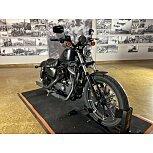 2019 Harley-Davidson Sportster Iron 883 for sale 201098985
