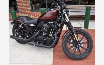 2019 Harley-Davidson Sportster for sale 201105120
