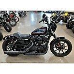 2019 Harley-Davidson Sportster Iron 1200 for sale 201114378