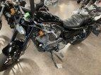 2019 Harley-Davidson Sportster Roadster for sale 201116849