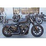 2019 Harley-Davidson Sportster Iron 883 for sale 201145395