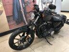 2019 Harley-Davidson Sportster Iron 883 for sale 201148909