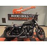 2019 Harley-Davidson Sportster Iron 883 for sale 201169453