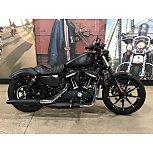2019 Harley-Davidson Sportster Iron 883 for sale 201181461