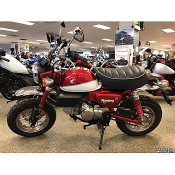 2019 Honda Monkey for sale 200677744